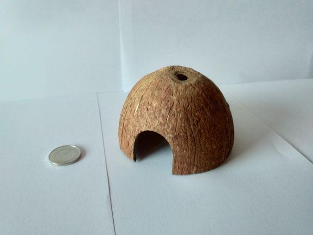 Domek z kokosa i zabawka dla gryzonia