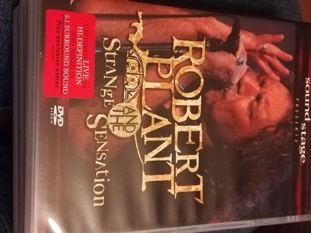 Robert Plant Strange and the Sensation dvd