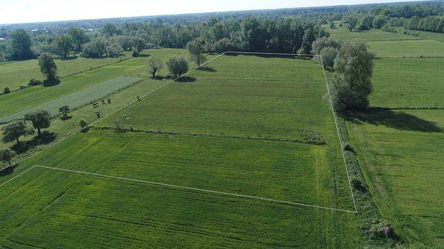 sprzedam 2 ha ziemi w gminie Leoncin