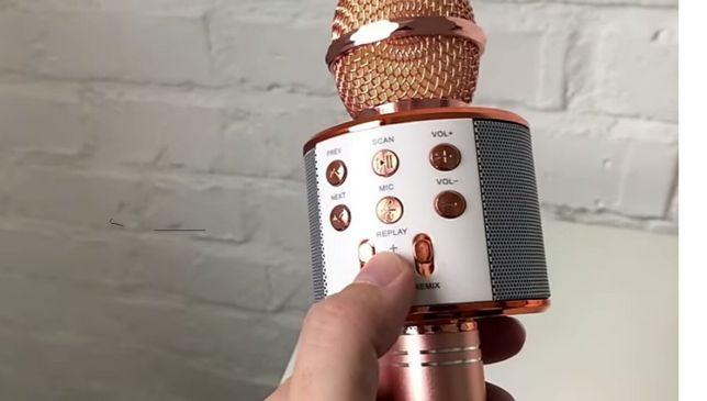 Дитячий караоке-мікрофон WS-858 з динаміком