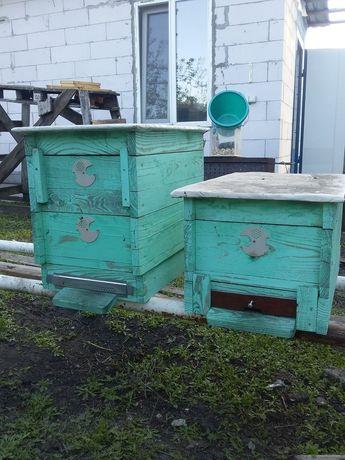 Улья улья для пчёл