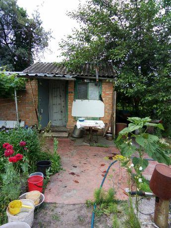 Дача, дом в Чепилиевке