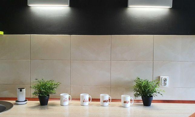Apartament w centrum Katowic 102 m², 4 pokoje. Blisko ŚUM. Śródmieście
