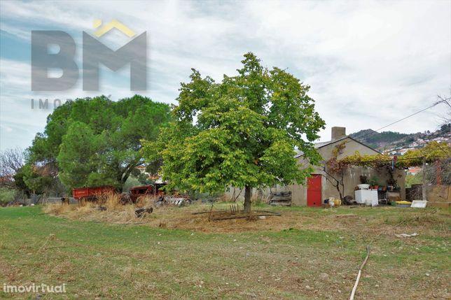 Quinta  Venda em Penha Garcia,Idanha-a-Nova