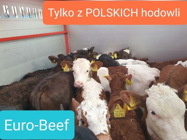 Cielaczki sprzedam tylko Polskie byki na gwarancje