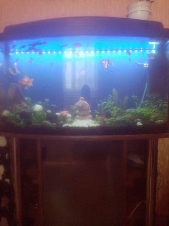 аквариум с тумбой