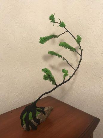 Дерево бонсай из стабилизированного мха