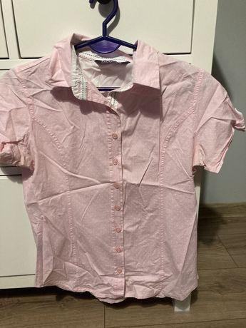 Koszula krotki rekaw r L