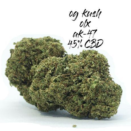 50 GRAM AK-47 45% Susz CBD Marihuana Medyczna Legalna Premium