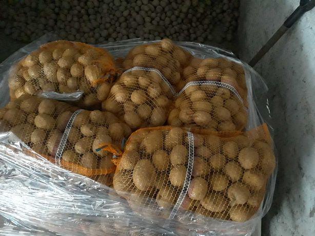 GALA ziemniaki 15kg
