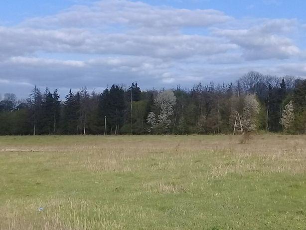 Продам земельну ділянку Срижавка