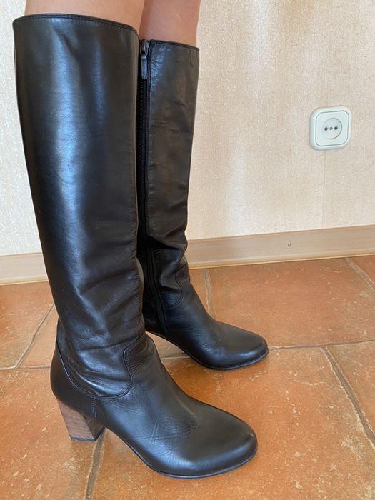 Сапоги кожаные Carlo Pasolini 35 размер Киев - изображение 1