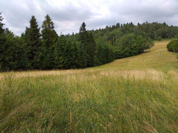 Działka budowlana w górach - Milówka, Kolonia Prusów