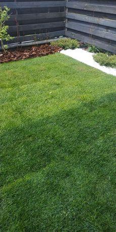 Рулонный газон.Работы по озеленению под ключ.Автополив.Проектирование