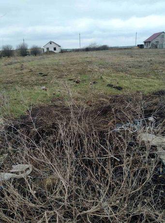 Участок без строений в Великом Дальнике Беляевского района 176617