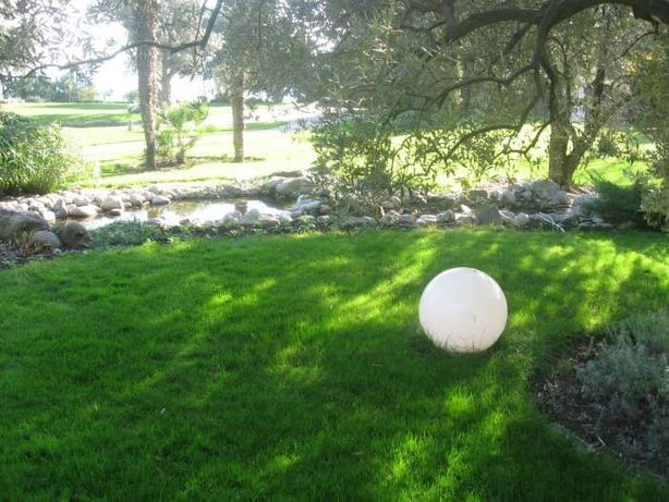 Семена газонных трав, 75грн/кг Урожай 2020