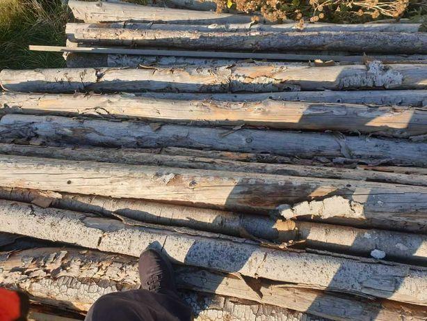 Stemple budowlane drewniane od 280 do 300 cm TANIO !!! 3 zł/szt.