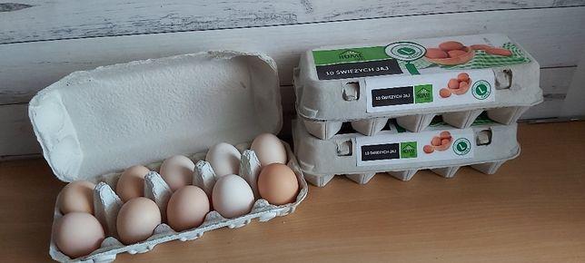 Jaja wiejskie od szczęśliwych kurek
