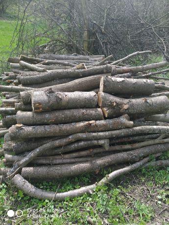 Продам дрова сливові