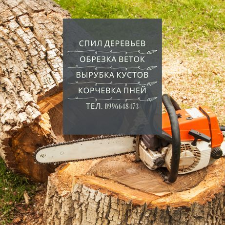 Спил деревьев. Удаление корней / пней. Обрезка аварийных веток