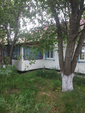 Продається будинок в с. Пилиповичи