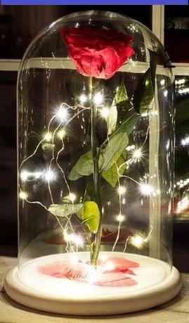 Вічна троянда в колбі з підсвічуванням