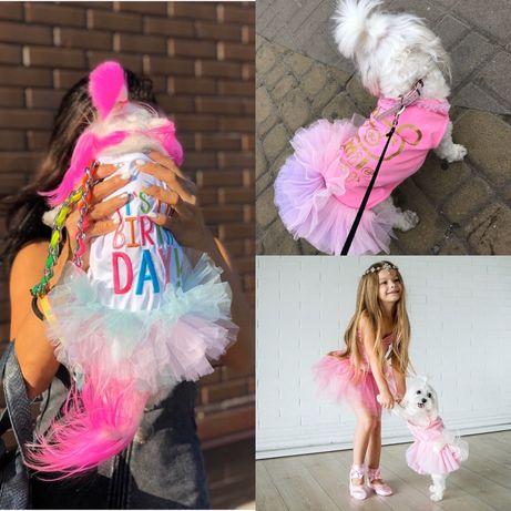 Одежда платье для собак мальтезе йорк