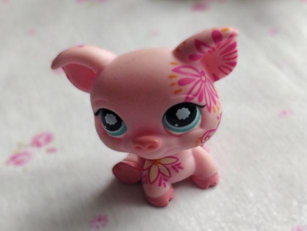 Littlest Pet Shop - LPS - Hasbro - Świnka, prosiaczek