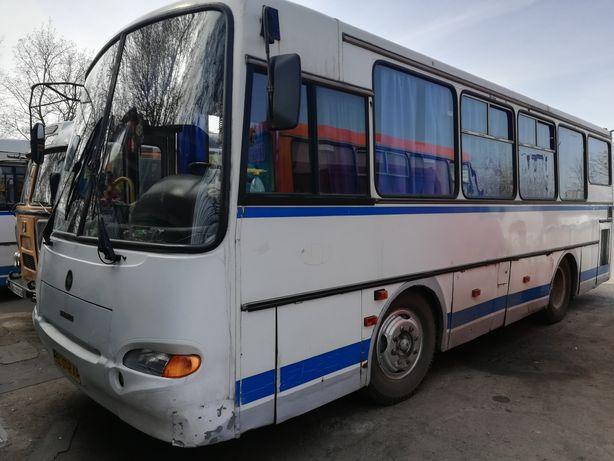 """Автобус ПАЗ 4230 """"Аврора"""""""