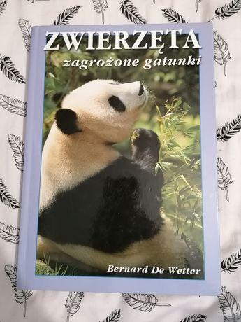 """Książka """"Zwierzęta zagrożone gatunki"""""""