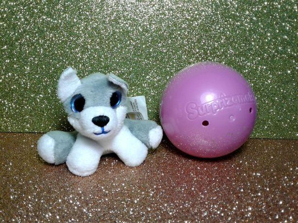 Собачка хаски глазастик в шаре