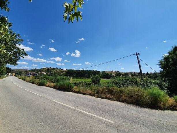 Terreno para construção centro de Mirandela (Possibilidade de Permuta)