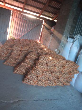 Ziemniaki na zimę