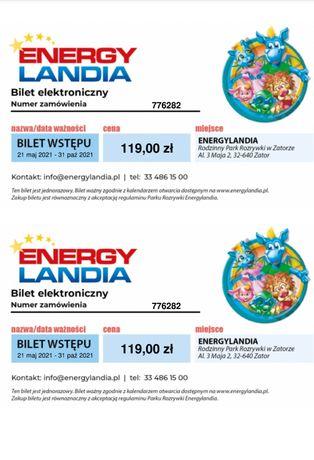 Bilety 2 normalne Energylandia PROMOCJA