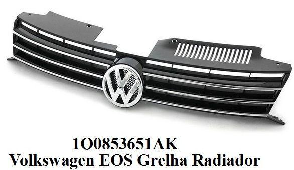 Volkswagen EOS Grelha Radiador completa, nova e original