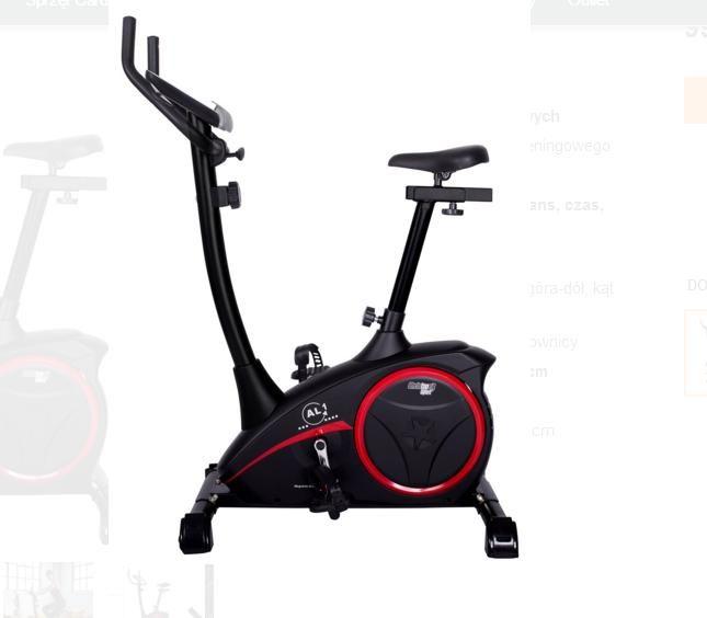 Rower treningowy Christopeit AL1 Rydzyna - image 1