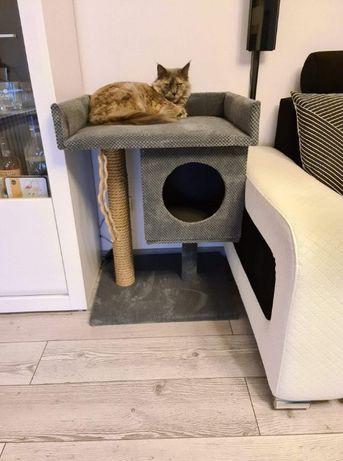 Drapaki dla Kotków pod wymiar