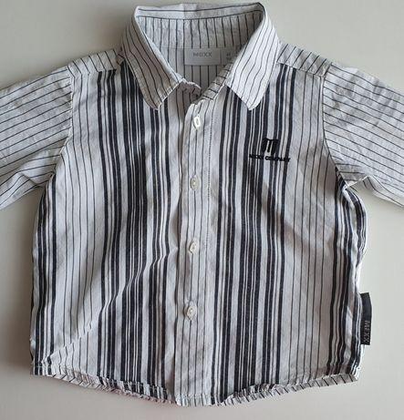 Elegancka koszula marki Mexx rozmiar 68