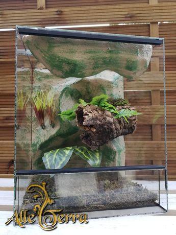 Terrarium szklane o leśnym wystroju 43x35x51 cm