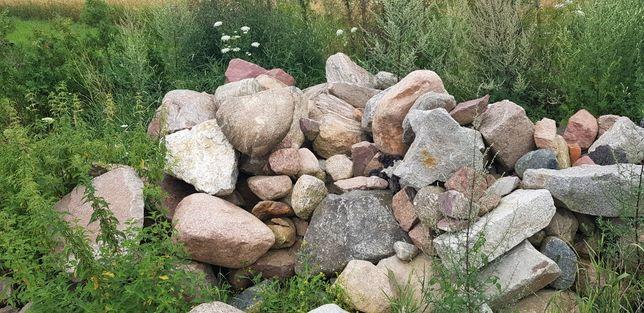 Kamień, skalniaki