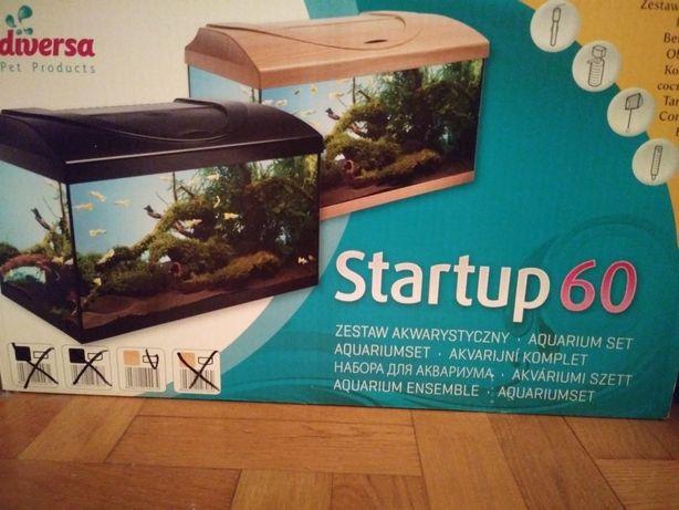 Akwarium kompletny zestaw Startup 60L Firmy Diversa
