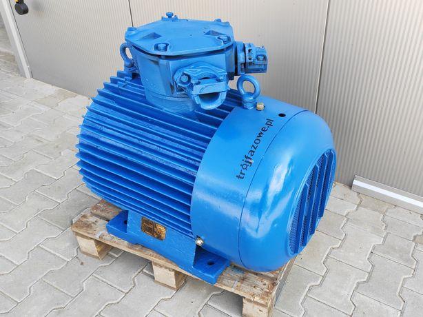 Silnik elektryczny 55 kW 2900 obr przeciwwybuchowy Celma Ex cSg 250 M2
