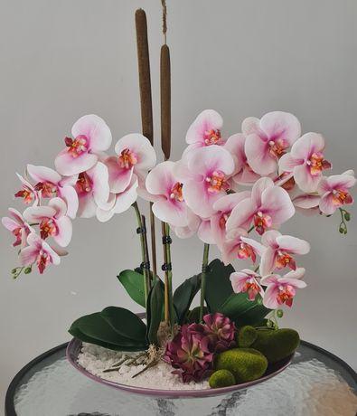 Prato de orquídeas