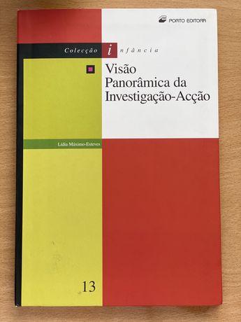 Visão panorâmica da investigação-ação
