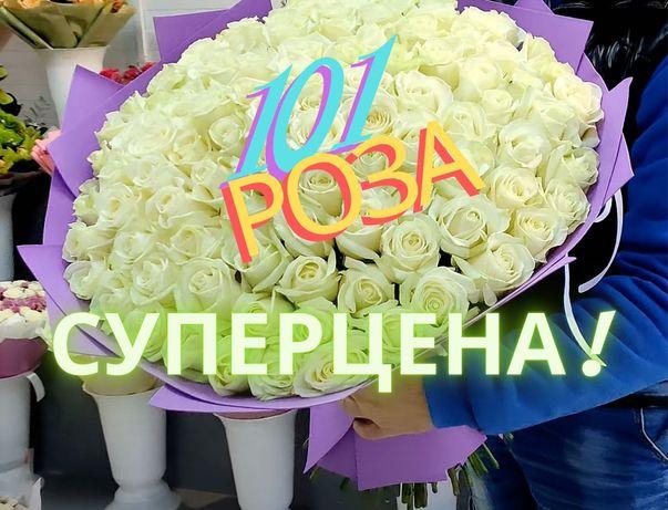 Доставка Цветов Днепр, Букет 101 Белая роза Эквадор, ХИТ ЦЕНА! АКЦИЯ!