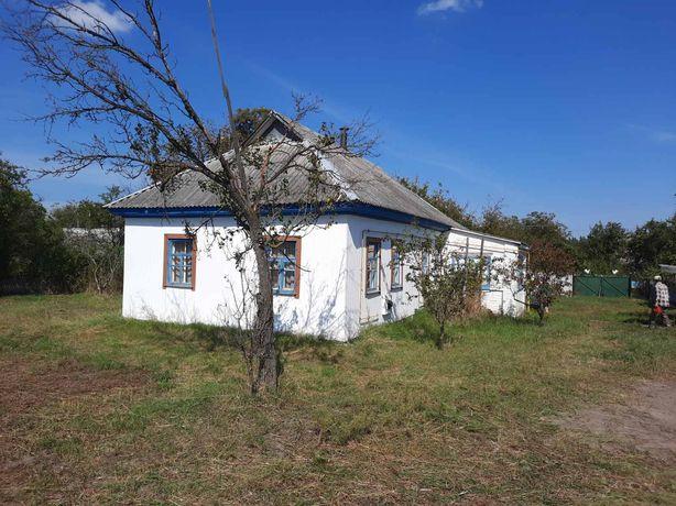 Будинок в селі Борівка Макарівського району