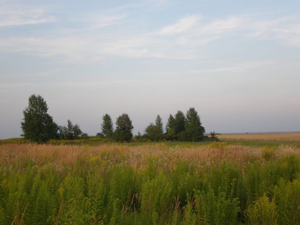Продаж земельної ділянки. ТЕРМІНОВО