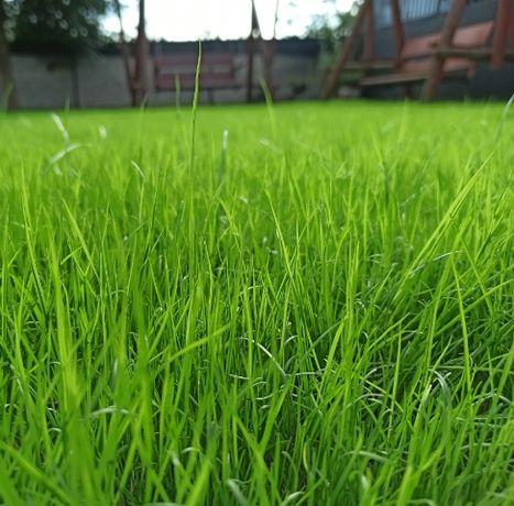 Mieszanka nasion traw SP 50 Cień i Słońce WOLF Garten