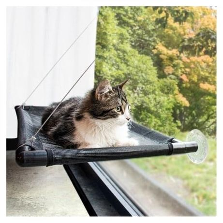 Rede para janelas - Gatos