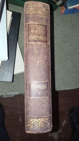 Бремь ,Жизнь животных.Том 7-Птицы.1910г.